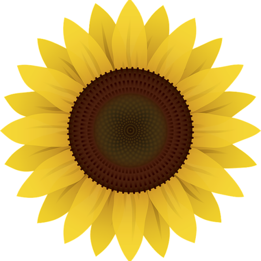 cropped-flowers-1169667_640.png
