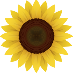 cropped-sunflower-logo